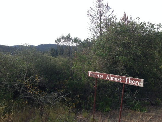 Here's a random sign I saw near Lit Camp at Mayacamas Ranch near Calistoga